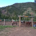 Foto de Crossed Sabres Ranch