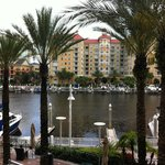 صورة فوتوغرافية لـ ‪Tampa Marriott Waterside Hotel and Marina‬