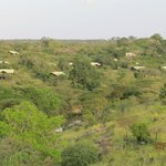 Foto de Serengeti Migration Camp