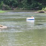 tubing on the Congaree River, West Columbia Riverwalk, June 2014