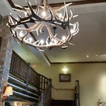 Antler light fixture in the check in area.