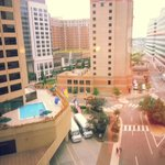 Hyatt Regency Crystal City Foto