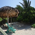 Beach palapa and chair