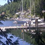 outward view of Pender Harbour