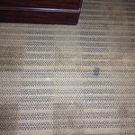 Dirty carpet in our room