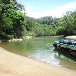 Anaconda Lodge Ecuador Amazonia照片