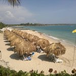 Royal Decameron Baru의 사진