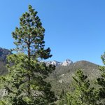Mt. Charleston Lodge照片