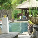 Foto Bagus Jati Health & Wellbeing Retreat