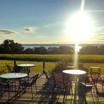 Buttonwood Grove Winery Cabinsの写真