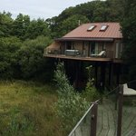 a view of a neighbouring treehouse at the Chewton Glen