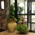 Front entry - nice plants