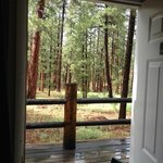 View from Cabin #28