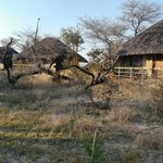 Foto de Hakusembe River Lodge