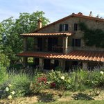 Casa Ombuto - Cooking Vacations Tuscanyの写真