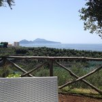 View from the garden - Capri Island