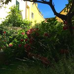 Billede af Il Giardino Incantato Bed and Breakfast