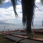 Canoe Tours & SUP hire next door