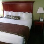 Alexis Inn & Suites Nashville Airport Opryland照片