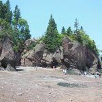 Photo de Hopewell Rocks