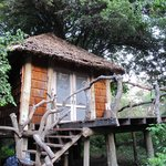 Foto andBeyond Lake Manyara Tree Lodge