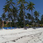Foto de Barcelo Dominican Beach