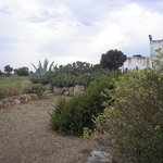 Photo of Masseria Palombara Grande