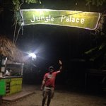 Jungle palace literally it is jajajajaj