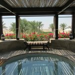 Pool area overlooking desert