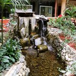 Atrium pond and waterfall.