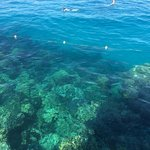 Snorkelling off the jetty