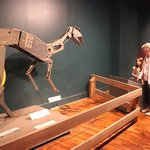 robot, mechanism, dinosaur exhibit, South Carolina State Museum, July 2014