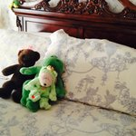 Foto di Frog & Bear Bed & Breakfast