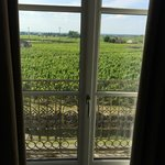 View from bathroom to vineyards