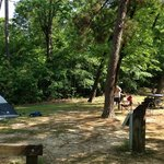 We had 2 campsites next to each other.  Very shaded area.