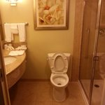 Photo de Hilton Garden Inn Lake Buena Vista/Orlando