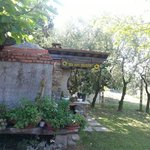Foto de Bed and Breakfast Il Girasole