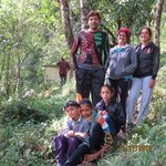 Club Mahindra Gangtok, Royal Demazongの写真