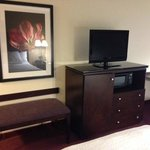 Hampton Inn Richmond-Airport resmi