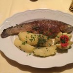 Fresh trout and potatoes