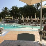 pool & some sun lounges