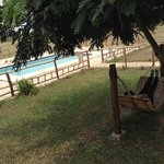 Foto de Ihamba Lakeside Safari Lodge