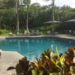 Mauna Lani Point swimming pool: very quiet