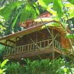 Foto de Samasati Nature Retreat