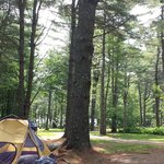 ภาพถ่ายของ Searsport Shores Oceanfront Campground