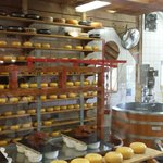 The gouda cheese factory