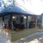 Photo of Bateleur Bushveld Camp