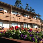Photo de BEST WESTERN PLUS Austrian Chalet