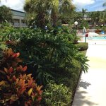 Hampton Inn Clearwater Central Foto
