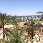 Zdjęcie Club Magic Life Sharm el Sheikh Imperial